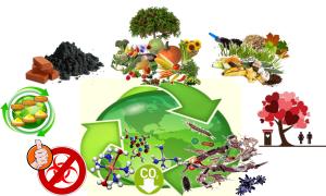 Komposttoilette.com ökologische Bio-Komposttoiletten - biologischer Kompost-Kreislauf